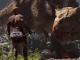 Ark: Survival-Spiel erhält Nachfolger und Anime-Serie