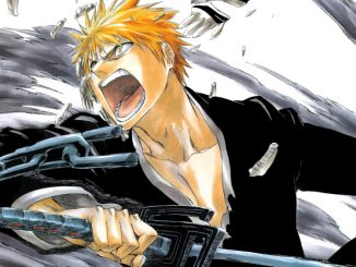 Bleach: Anime wird endlich fortgesetzt - doch wann erscheint Staffel 17?